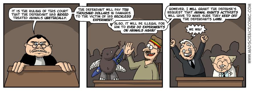 36: The Verdict